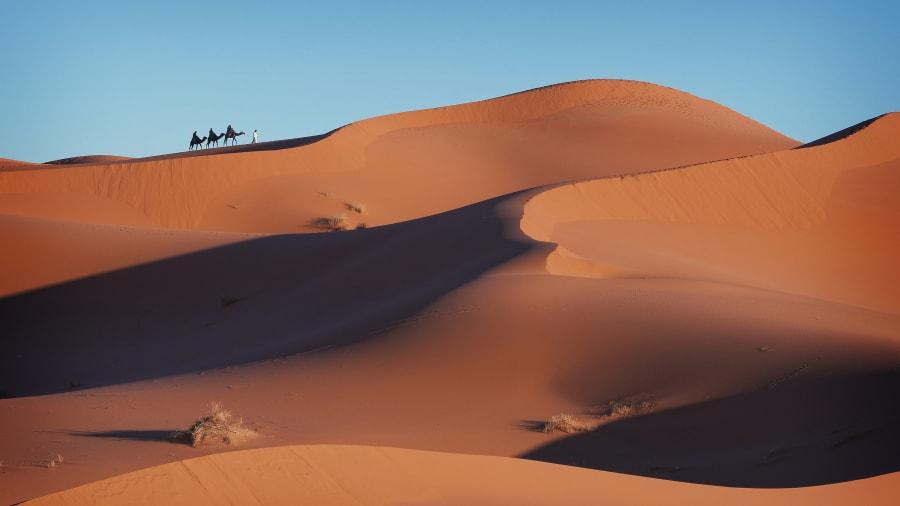 Wydmy Sahara - Zdjęcie Afryka