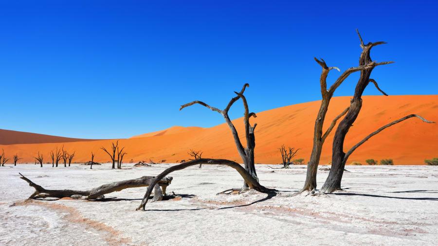 Wydmy Sossusvlei - Zdjęcie Afryka