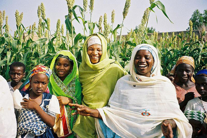 Nigeria rolnictwo